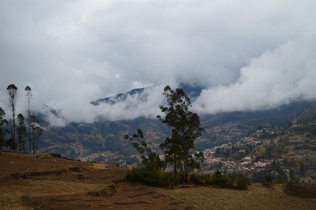En algún lugar de la selva boliviana